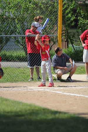 2015-06-07 Bees Baseball U8 vs Fairview 005
