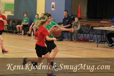 2017-01-28 BvHts GBkBall 4th vs Red (020)