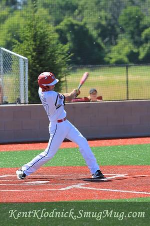 2017-07-02 Bees Baseball Sandusky 033