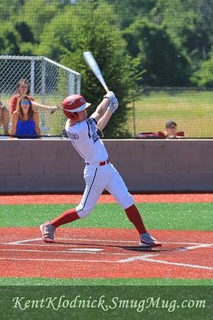 2017-07-02 Bees Baseball Sandusky 027