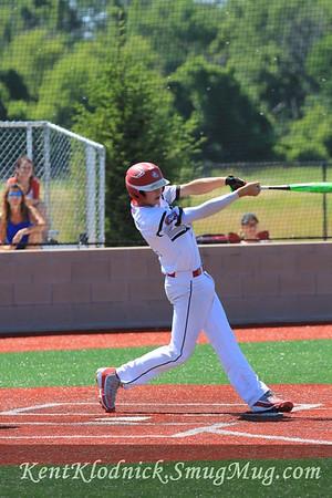 2017-07-02 Bees Baseball Sandusky 016