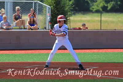 2017-07-02 Bees Baseball Sandusky 013