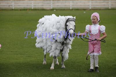 Fancy Dress & Hobby Horse