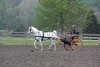 2008 VAHA District IV Horse Show April (Spotsylvania, VA) : 56 galleries with 717 photos