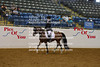 VAHA Arabian Horse Show and Futurity June 2012 : 57 galleries with 1577 photos
