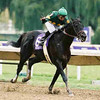 Vindication remains undefeated by defeating the best of his peers at Arlington Park, Saturday October 26, when winning the Breeder's Cup Juvenile [G1] by 2 3/4 lengths over Kafwain for second, and Hold that Tiger for third. Breaking sharply from the 6 hole, Vindication set the pace along with Bull Market, going a half in 46, 6 in 109 4/5, mile in 135 3/5 and finishing the 1 1/8th miles in 149 3/5. Earlier in his career Vindication won maiden and optional claiming races at Del Mar, and the Kentucky Cup Juvenile [G3] prior to the Breeder's Cup.