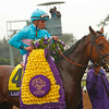 Lady Eli   wins the Juvenile Filly Turf