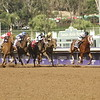 Take Charge Brandy wins the 14 Hands Breeders Cup Juvenile Filly