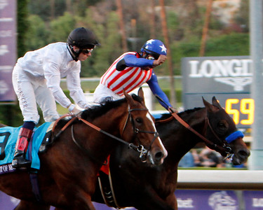 2014 Breeders Cup Saturday