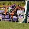 Highland Reel wins the Breeders Cup Turf