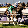 Tourist win the Breeders Cup Mile