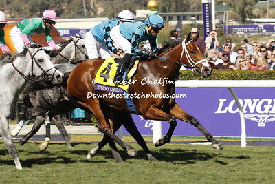Turf Sprint - Stormy Liberal