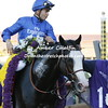 Talismatic wins the Breeders Cup Turf