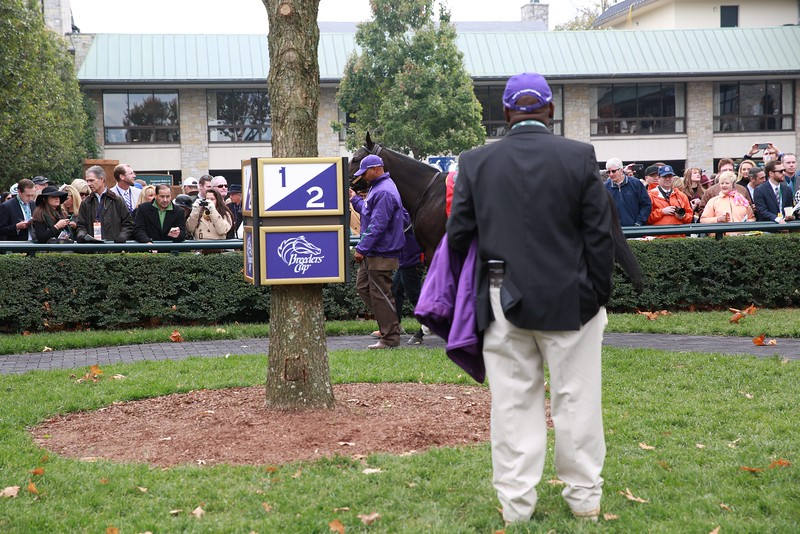 Lexington, KY - Keeneland - Breeders Cup 2015 with Breeders Cup 2015 aboard wins the $2 Million Breeders' Cup Filly & Mare Turf for trainer Breeders Cup 2015 and owner Breeders Cup 2015 here today, Thursday November 12, 2015 during the Breeders' Cup World Thoroughbred Championships. Photo by © Breeders' Cup/Molly Bowls 2015