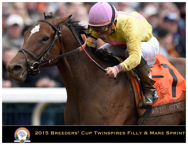 BC15 Twin Spires Filly Mare Sprint Champions 1st draft_Page_01