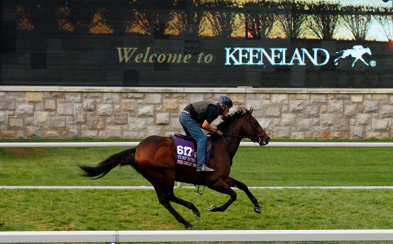 10-25-15 Breeder's Cup Morning Works