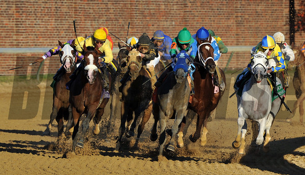 2011 Breeders' Cup