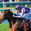 St Nicholas Abbey Joseph O'brien up, wins the Breeders Cup Turf at Churchill Downs, Lousiville, KY 11/5/11, photo by Mathea Kelley