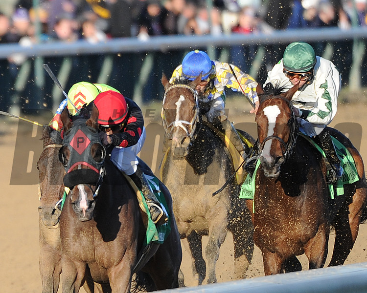 Musical Romance, Juan C Leyva up, wins the Breeders Cup Filly and Mare Sprint Churchill Downs , Lousiville, KY 11/4/11, photo by Mathea Kelley