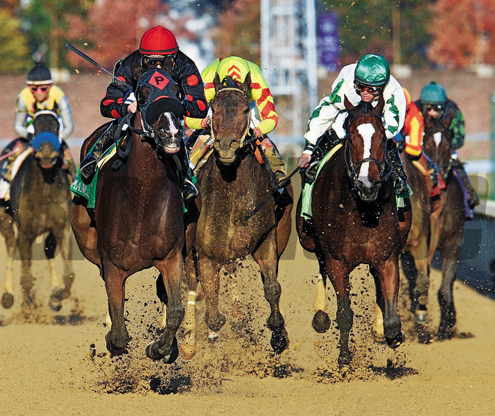 (November 4, 2011) Musical Romance (red cap) and jockey Juan Leyva, draw off to win the Breeders Cup Filly and Mare Sprint at Churchill Downs...<br /> © 2011 Rick Samuels/The Blood-Horse