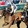 Amazombie, Mike Smith up, wins the Breeders Cup Sprint at Churchill Downs, Lousiville, KY 11/5/11, photo by Mathea Kelley