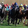 Wrote leads with way around the final turn in the 2011 Breeders' Cup Juvenile Turf