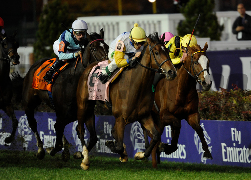 Perfect Shirl with jockey John Velazquez up wins the Breeders' Cup Filly and Mare Turf.<br /> Photo by Skip Dickstein