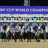 Royal Delta with jockey Jose Lezcano up wins the Breeders' Cup Laddies Classic.<br /> Photo by Skip Dickstein