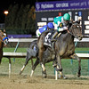 LadiesClassic Royal Delta 11.4 -- Palides Investment's Royal Delta rallied from off the pace under Jose Lezcano to score an emphatic 2 1/2-length victory over It's Tricky (#3 in blue, partially obscured by the winner) in the $2 million Breeders' Cup Ladies Classic Friday evening at Churchill Downs.  Royal Delta is trained by Bill Mott, the all-time leading trainer at Churchill Downs who won the Ladies' Classic last year with Unrivaled Belle.