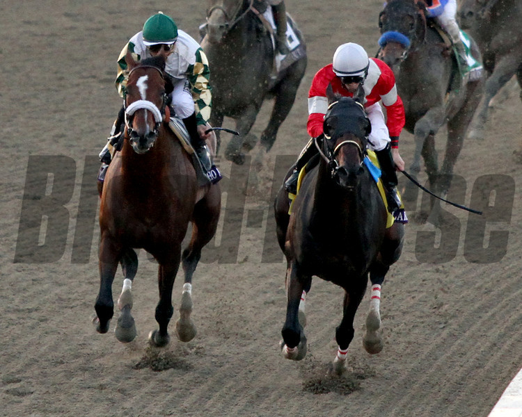 Fort Larned w/Brian Hernandez Jr. up & Mucho Macho Man w/Mike Smith up turn for home together in the Breeders' Cup Classic at Santa Anita Park on November 3, 2012.<br /> Photo by Chad Harmon