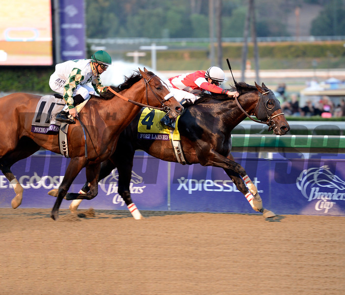 Caption: Fort Larned with Brian Hernandez Jr. wins the Breeders' Cup Classic.<br /> Breeders' Cup races at Santa Anita near Arcadia, California, on Nov. 3, 2012.<br /> BCRACES2012        Classic  image677<br /> Photo by Anne M. Eberhardt