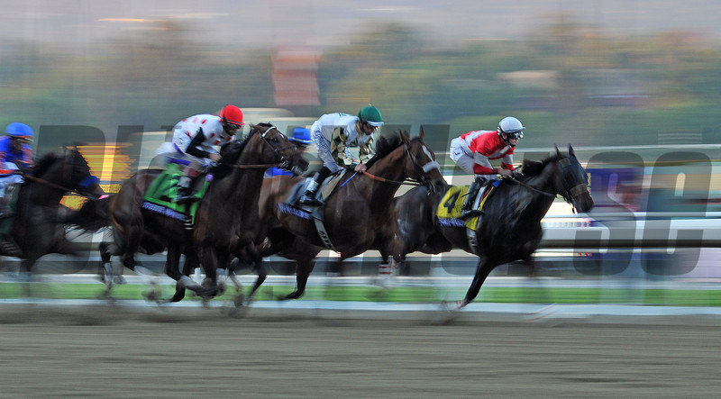First time by in the Breeders Cupp Classic. Fort Larned (4) and Mucho Macho Man (green cap), run one- two the entire race...<br /> © 2012 Rick Samuels/The Blood-Horse
