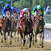Winchell Thoroughbreds Tapizar, Corey Nakatani up, wins the Breeders Cup Dirt Mile...<br /> © 2012 Rick Samuels/The Blood-Horse