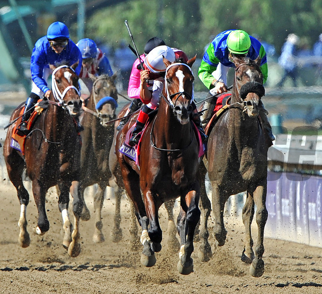 Winchell Thoroughbreds Tapitzar, corey Nakatani up, wins the Breeders Cup Dirt Mile...<br /> © 2012 Rick Samuels/The Blood-Horse