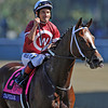Jockey Corey Nakatani and Tapizar heading to the winners circle after winning the Breeders Cup Dirt Mile...<br /> © 2012 Rick Samuels/The Blood-Horse