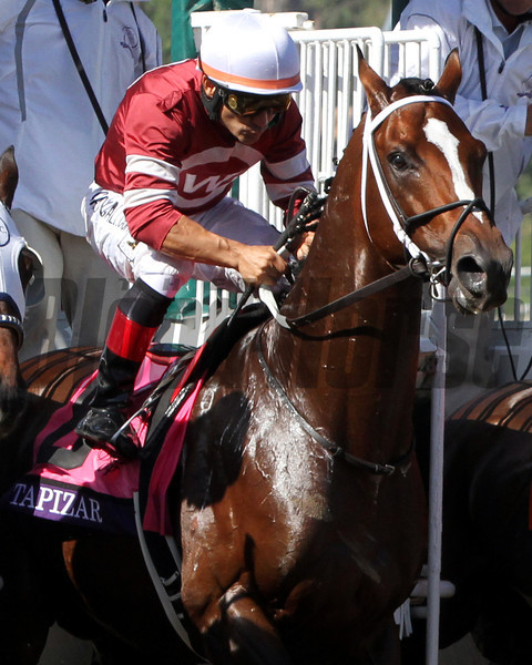 Tapizar w/Corey Nakatani up leave the starting gate and win the Breeders' Cup Dirt Mile at Santa Anita Park on November 3, 2012.<br /> Photo by Chad Harmon