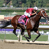 Tapizar w/Corey Nakatani up win the Breeders' Cup Dirt Mile at Santa Anita Park on November 3, 2012.<br /> Photo by Chad Harmon