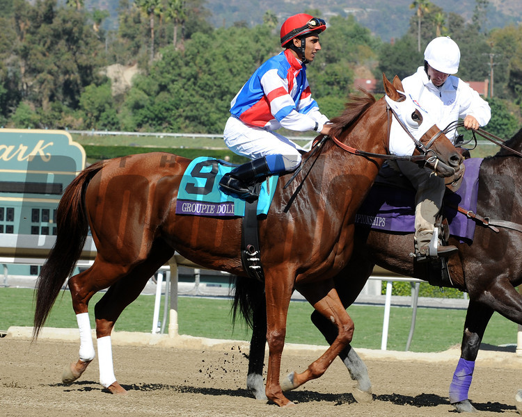 Groupie Doll in the Post Parade for the 2012 Breeders' Cup Filly and Mare Sprint.<br /> Photo by Dave Harmon