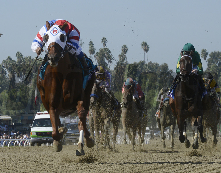Groupie Doll ridden by Rajiv Maragh wins the Breeders' Cup Filly and Mare Sprint at Santa Anita Park in Arcadia, Calif. November 3, 2012  Photo by Skip Dickstein