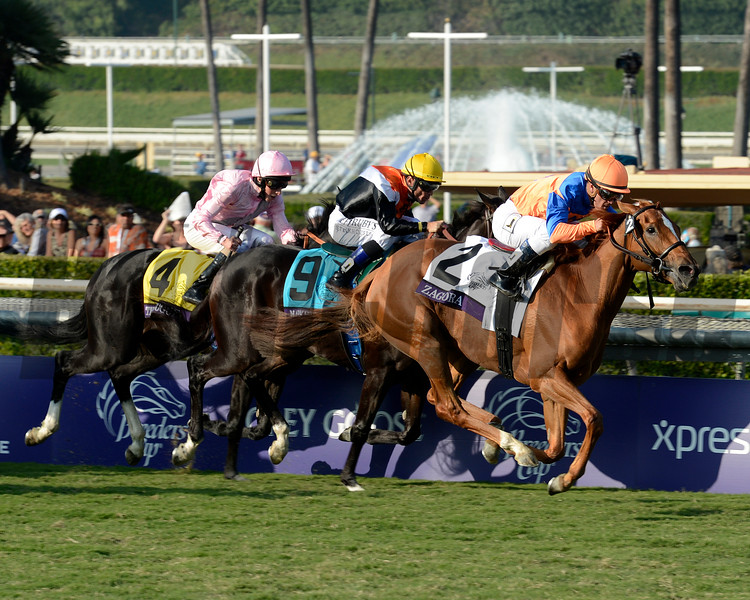 Caption: Zagora with Javier Castellano wins the Breeders' Cup Filly and Mare Turf.<br /> Breeders' Cup races at Santa Anita near Arcadia, California, on Nov. 2, 2012.<br /> BCRACES2012          FMTurf1   image161<br /> Photo by Anne M. Eberhardt