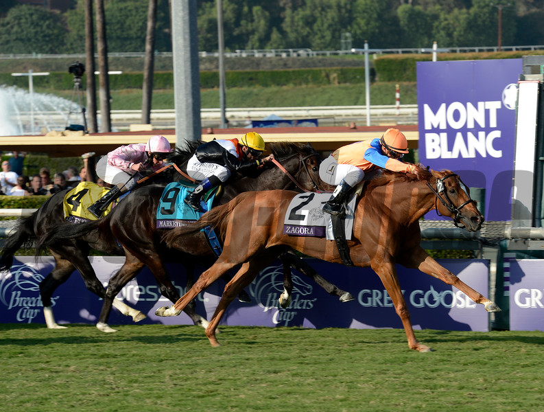 Caption: Zagora with Javier Castellano wins the Breeders' Cup Filly and Mare Turf.<br /> Breeders' Cup races at Santa Anita near Arcadia, California, on Nov. 2, 2012.<br /> BCRACES2012          FMTurf1   image163<br /> Photo by Anne M. Eberhardt