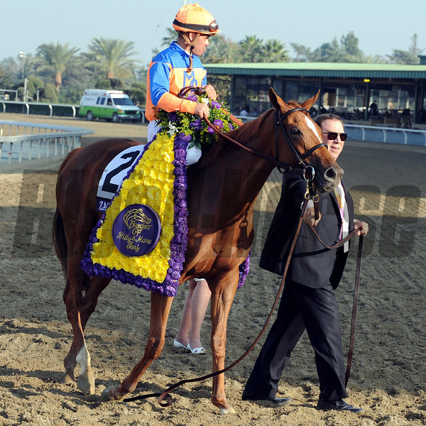 Zagora wins the 2012 Breeders' Cup Filly & Mare Turf. <br /> Photo by Dave Harmon