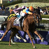 Zagora with jockey Javier Castellano outduels the field to the win in The Breeders' Cup Filly & Mare Turf at Santa Anita Park in Arcadia, California November 2, 2012.  <br /> Photo by Skip Dickstein