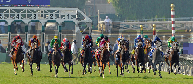 Start of the Gr1 Breeders' Cup Juvenile Filly Turf...<br /> © 2012 Rick Samuels/The Blood-Horse