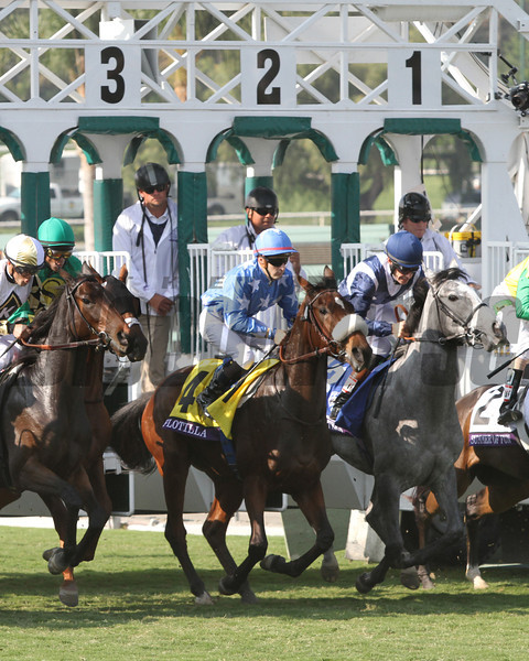 Flotilla w/Christophe Lemaire up leave the starting gate in good order and go on to win the Breeders' Cup Juvenile Turf at Santa Anita Park on November 2, 2012.<br /> Photo by Chad Harmon