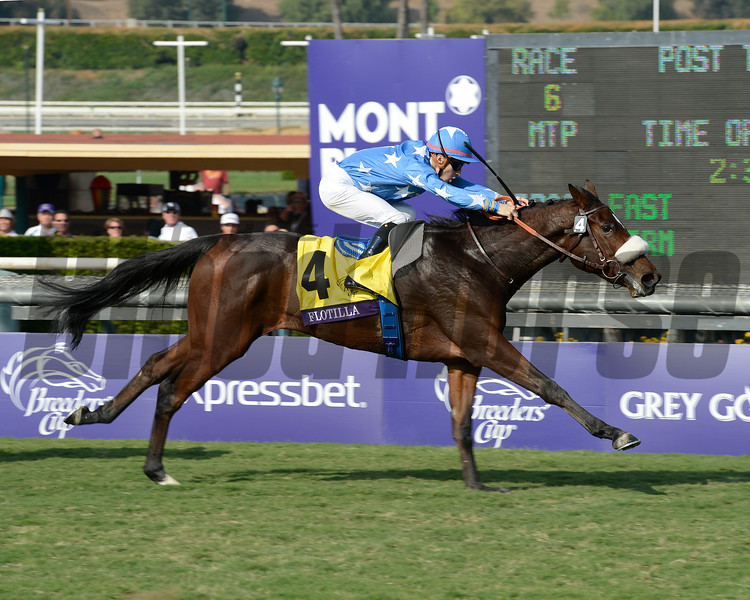 Flotilla with Christophe Lemaire wins the Juvenile Fillies Turf.<br /> Breeders' Cup races at Santa Anita near Arcadia, California, on Nov. 2, 2012.<br /> BCRACES2012                                          image857<br /> Photo by Anne M. Eberhardt