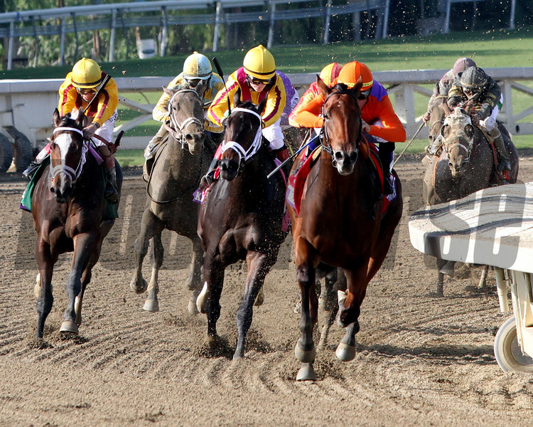 Beholder w/Garrett Gomez up (Orange Silks) come off the turn with the lead and go on to win the Breeders' Cup Juvenile Fillies at Santa Anita Park on November 2, 2012.<br /> Photo by Chad Harmon