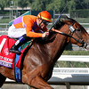 Beholder w/Garrett Gomez up win the Breeders' Cup Juvenile Fillies at Santa Anita Park on November 2, 2012.<br /> Photo by Chad Harmon