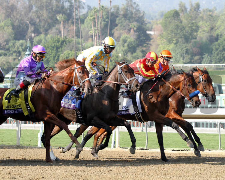 Beholder w/Garrett Gomez up & Executiveprivilege w/ Rafael Bejarano started the same way they finished in the Breeders' Cup Juvenile Fillies at Santa Anita Park on November 2, 2012.<br /> Photo by Chad Harmon