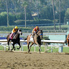 Beholder wins the 2012 Grey Goose Breeders' Cup Juvenile Fillies.<br /> Photo by Dave Harmon